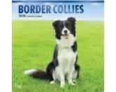 BrownTrout Hunde Kalender 2018Browntrout Hunde Wandkalender 2018: Border Collie
