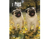 Browntrout Hunde Wochenplaner 2018: Pugs - Mops