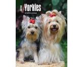 Browntrout Hunde Wochenplaner 2018: Yorkshire Terrier