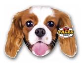 Pet Faces Kissen Hund: Cavalier King Charles -50 cm-