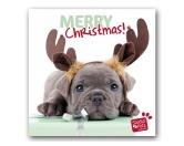 WeihnachtenMyrna Weihnachtskarte: Welpe Weihnachts Elch