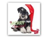 WeihnachtenMyrna Weihnachtskarte: Frohe Weihnachten -  Welpe
