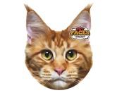 Pet Faces Kissen Katze: Maine Coon -50 cm-