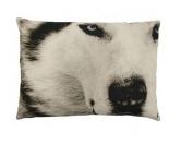 SchnäppchenWolf Design Kissen: Sepia Wolf