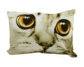 SchnäppchenKatze Design Kissen: Sepia Katze