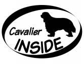 Bekleidung & AccessoiresHausschuhe & PantoffelnInside Aufkleber: Cavalier King Charles