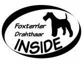 AusstellungszubehörHunderassen Ringclips vergoldetInside Aufkleber: Foxterrier Drahthaar 1