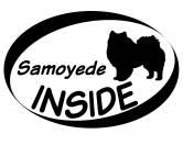 Tierkalender 2019Hundekalender 2019Inside Aufkleber: Samoyede 1