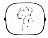 T-ShirtsHunderassen T-ShirtsSonnenschutzgitter-Hundemotiv: Deutsche Dogge