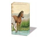 NeuheitenPapier-Taschentücher: Pferde - Horses 2