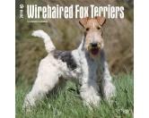 NeuheitenBrowntrout Hunde Wandkalender 2018: Wirehaired Fox Terrier
