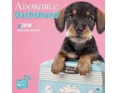 Dachshund - Dackel Welpen Studio - Hundekalender 2018 by BrownTrout
