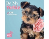 Browntrout Hunde Wandkalender 2018: Yorkshire Terrier Welpen Studio Pets