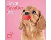Browntrout Hunde Wandkalender 2018: Cavalier Welpen Studio Pets