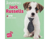 Jack Russell Terrier Welpen Studio - Hundekalender 2018 by BrownTrout