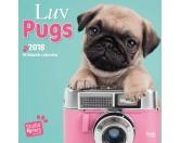 Mops Welpen Studio - Hundekalender 2018 by BrownTrout