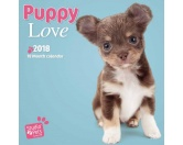 Browntrout Hunde Wandkalender 2018: Welpen Studio Pets