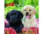 Hundedecken & KissenHunderasse Decken mit WunschnameLabrador Welpen - Hundekalender 2018 by BrownTrout
