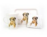 Aufkleber & TafelnHunderassen-AutoaufkleberBorder Terrier- Geschenk Set 3-teilig