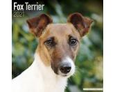 Bekleidung & AccessoiresSchals für TierfreundeFoxterrier - Hundekalender 2021 by Avonside