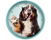 Schenken & ZubehörKleinigkeiten die Freude machenWanduhr Hund: Berner Sennenhund