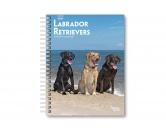 Küche & HaushaltGeschirrtücher, Topflappen & mehr!Labrador Retriever Wochenplaner 2019 by Browntrout