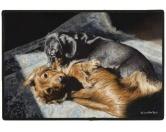 Tierische FußmattenDesigner Fußmatte: Dackel Duo