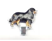 Taschen & RucksäckeShopper für HundefreundeHundeausstellungs-Startnummern-Clip: Berner Sennenhund