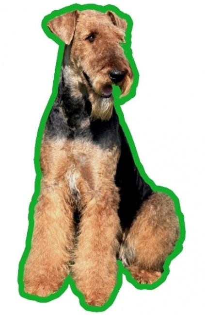 airedale terrier 2 duftbaum lufterfrischer tierisch. Black Bedroom Furniture Sets. Home Design Ideas