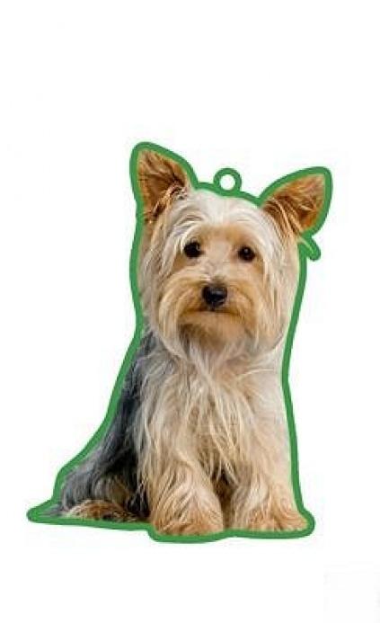duftbaum wunderbaum yorkshire terrier tierisch tolle. Black Bedroom Furniture Sets. Home Design Ideas