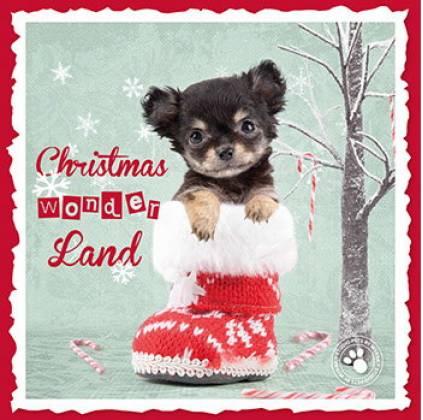 myrna weihnachtskarte yorkshire terrier hunderassen weihnachtskarten briefkarten. Black Bedroom Furniture Sets. Home Design Ideas