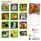 BrownTrout Hunde Kalender 2018Browntrout Hunde Wandkalender 2018: Pomeranians - Pomeraner