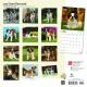 BrownTrout Hunde Kalender 2018Browntrout Hunde Wandkalender 2018: Saint Bernards - Bernhadiner